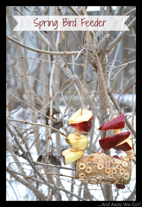 bird feeder crafts for craft ideas for bird feeder the house