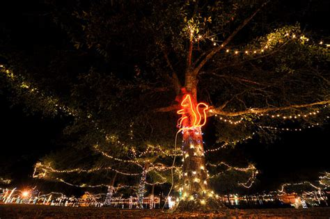 defuniak springs lights lights in defuniak springs local dothaneagle