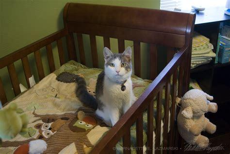 cat net for baby crib cat crib new cat crib purple cat hammock cat bed fits