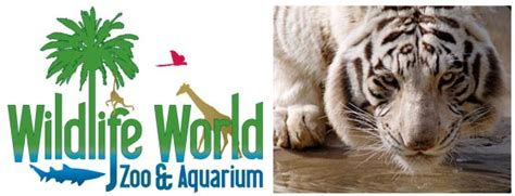 wildlife world zoo lights wildlife world zoo coupons 2017 hotels hours