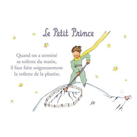carte postale le petit prince la toilette de la plan 232 te la boutique du petit prince