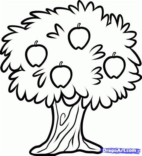 how to draw tree pictures how to draw a fruit tree step by step trees pop culture