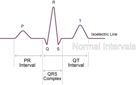 normal duration times normal function of the