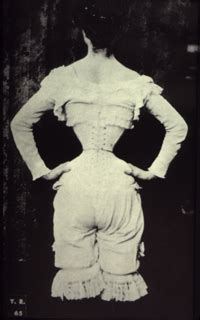 waist history in the name of dimensions of