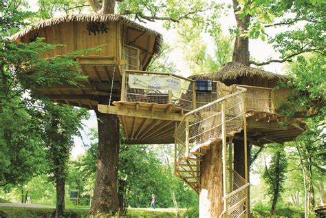 treehouse house tree top houses on tree houses treehouse and