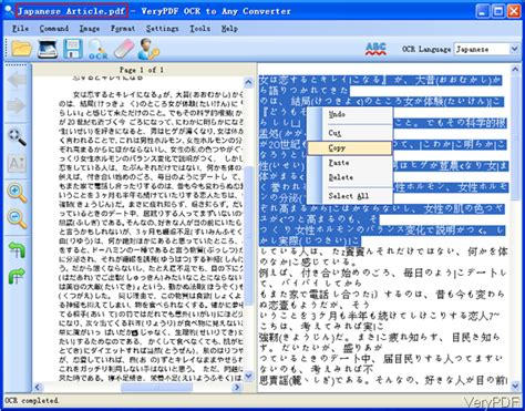 translate japanese how to translate pdf file in japanese to