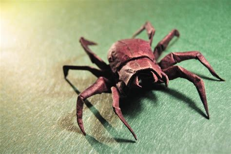 how to make origami spider 13 incredibly creepy origami spiders