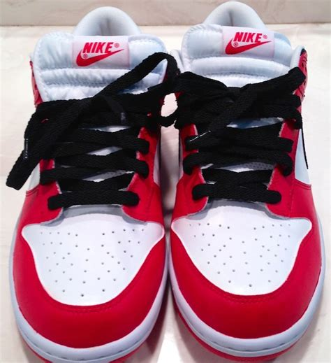 angelus paint on jordans air 1 inspired nike dunks customized with angelus paint