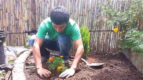 dise o de jardines peque os para casas dise o de jardines peque os parte iii ideas y consejos