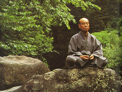 buddhist meditation zen buddhism cultural immersion what makes the zen
