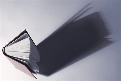 picture of book shadow book