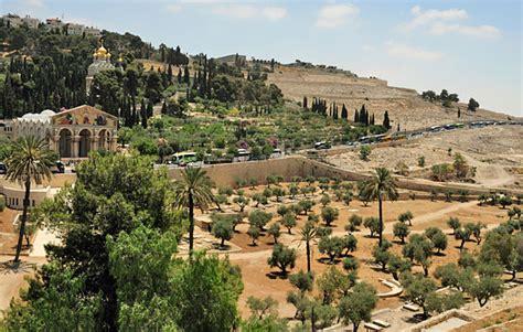 Gärten Der Nationen by Der 214 Lberg In Jerusalem 169 Matthias Hinrichsen