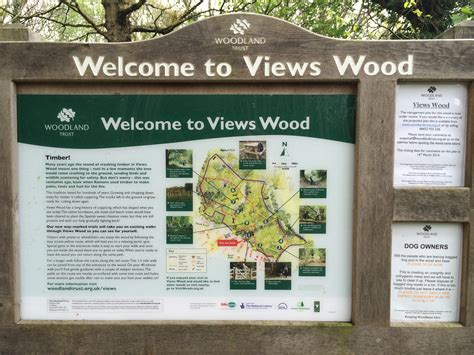 woodworking facts trees to be felled in views wood uckfield uckfield news
