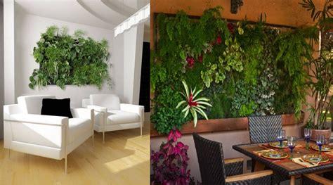 indoor wall garden indoor vertical garden ideas