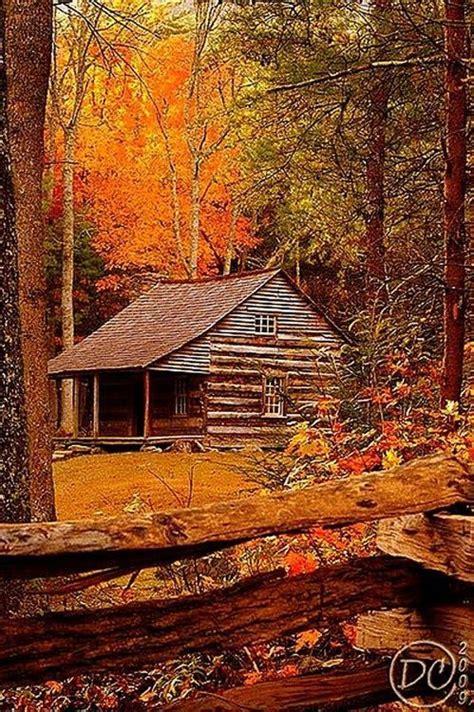Schönste Farbe Der Welt by 231 Besten Herbst Die Sch 246 Nste Jahreszeit Bilder Auf