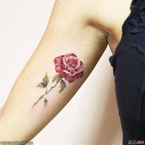 女子手大臂上的玫瑰花纹身图案