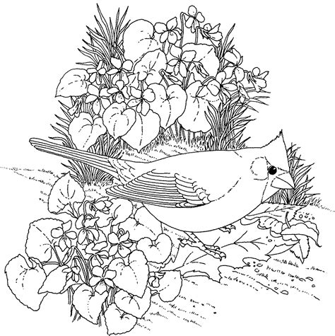flower coloring pages for adults bestofcoloring com
