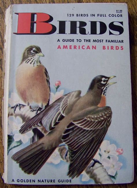 bird picture books my s bird book birds and gardens