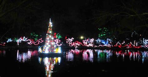cincinnati zoo festival of lights hours violet s silver lining things to do in ohio cincinnati