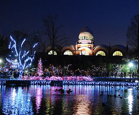 cincinnati zoo lights hours pnc festival of lights the cincinnati zoo botanical garden