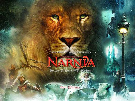 narnia picture books the chronicles of narnia tomorrows reflection