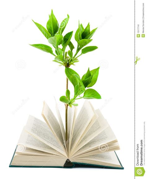 flower picture book book and plant stock image image 13177741
