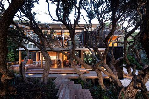 wooden nz une maison dans les arbres frenchy fancy