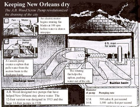 new orleans woodworking opinions on wood