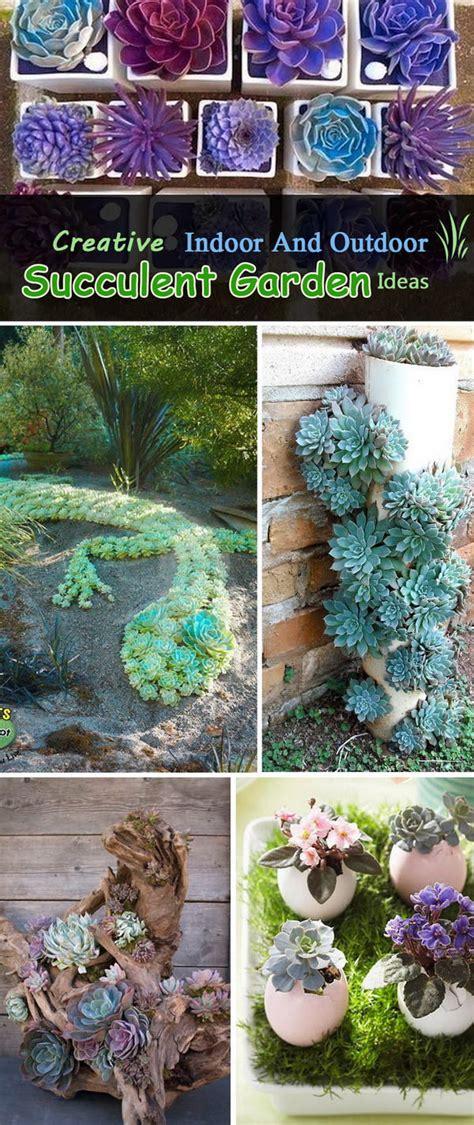 succulent garden ideas creative indoor and outdoor succulent garden ideas