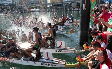 Dragon Boat Festival Sydney by Celebrate Chinese New Year In Sydney