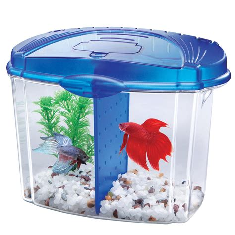 aqueon betta bowl aquarium kit in blue petco