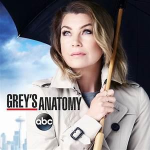 Grey's Anatomy, Season 12 on iTunes