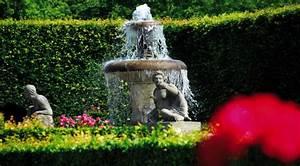 Sichtschutz Pflanzen Blühend : hecken pflanzen hecken schneiden haushaltstipps und gartentipps ~ Markanthonyermac.com Haus und Dekorationen