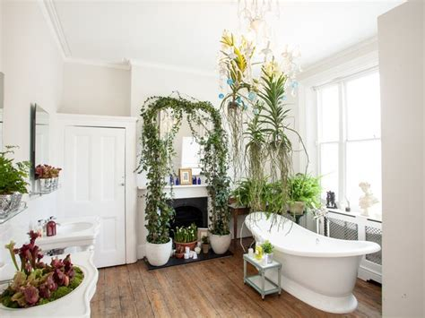 houseplants that thrive in your bathroom the of plants