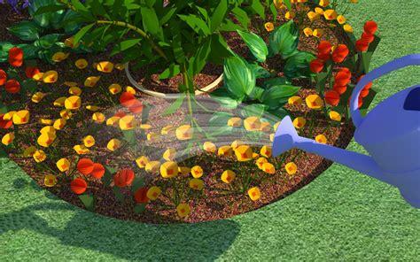 Starting A Flower Garden how to start a flower garden wikihow