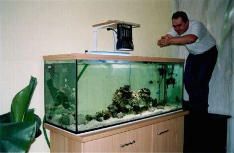 un 450 litres pour moins de 400 suite et fin aquarium r 233 cifal aquarium marin aquarium eau