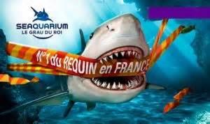 aquarium sealand de noirmoutier pas cher 2 entr 233 es pour 16 euros au lieu de 24