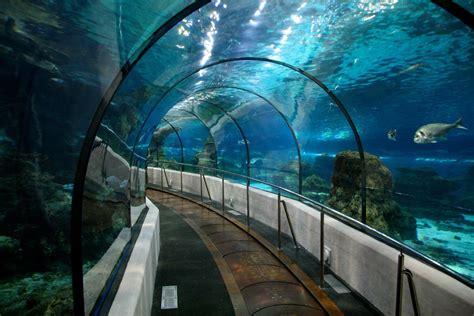 aquarium barcelona bcn events crawls
