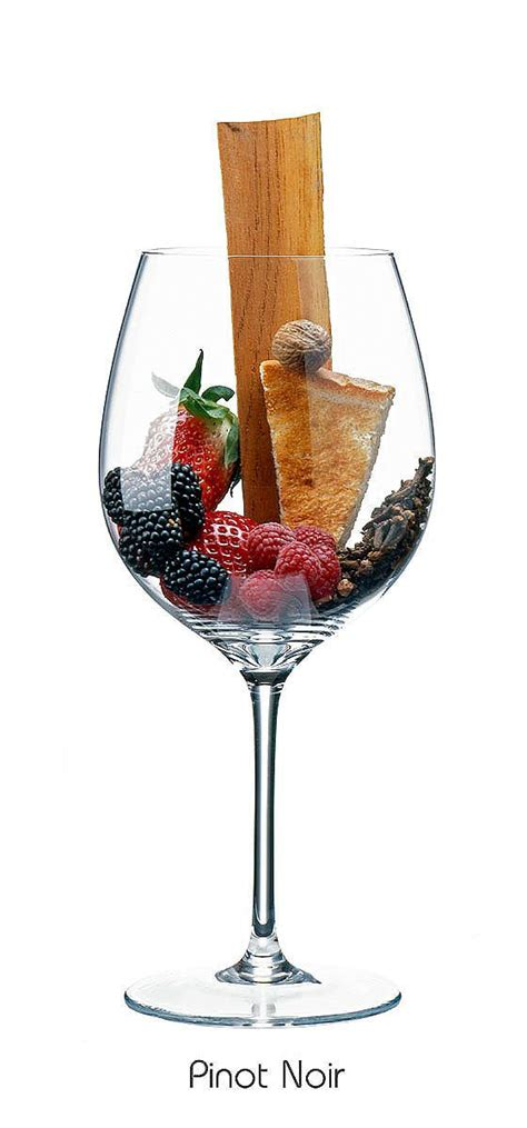 best 25 pinot noir wine ideas on wine guide pinot noir and wine types