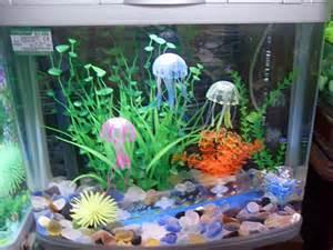 fish tank decorations aquarium decorations decorating your fish tank aquarium hq