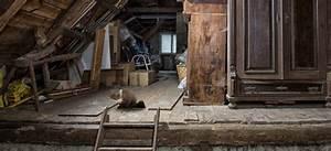 Dachboden Fußboden Verlegen : ll marder im haus machen sie ihr haus mardersicher ~ Markanthonyermac.com Haus und Dekorationen