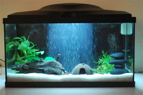 design aquarium 10 litres jardiland pau 22 aquarium