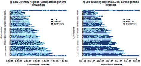 100 file genome boxer jpg wikimedia usage
