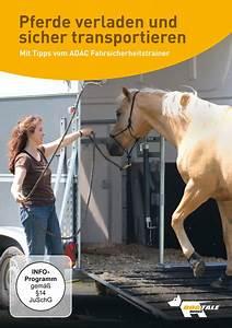 Möbel Transportieren Tipps : dvd pferde verladen und sicher transportieren championrider onlineshop ~ Markanthonyermac.com Haus und Dekorationen