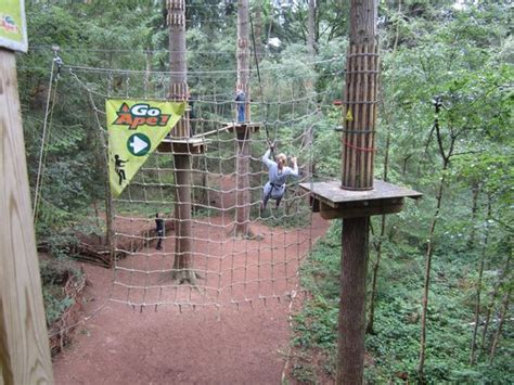Boat Building Courses London by Go Ape At Wyre Forest Bewdley England Hours Address