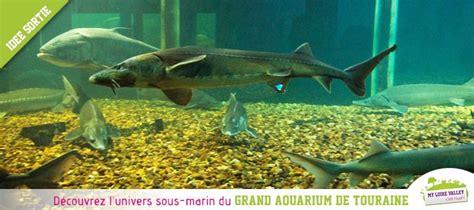 grand aquarium de touraine id 233 e de sortie en val de loire val de loire