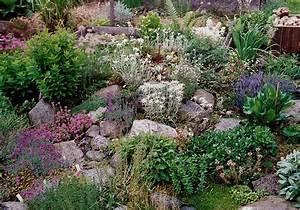 Gestaltung Kleiner Steingarten : hanggarten mit steinen ~ Markanthonyermac.com Haus und Dekorationen