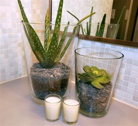17 best ideas about bathroom plants on indoor