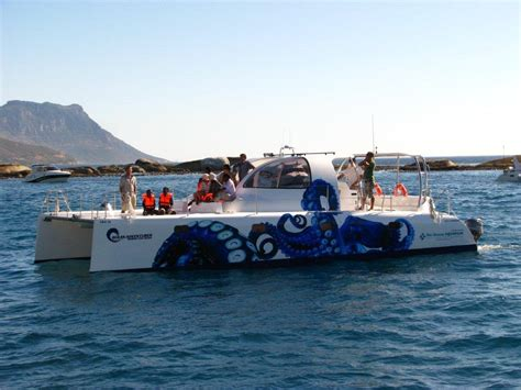 Lagoon Catamaran For Sale South Africa by Catamarans For Sale South Africa Wooden Boat For Sale