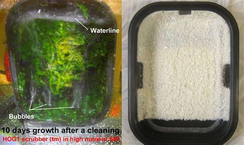 100 floor scrubber pads for pond filter 249 best